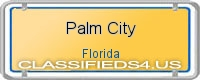 Palm City board